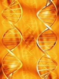DNA Activations